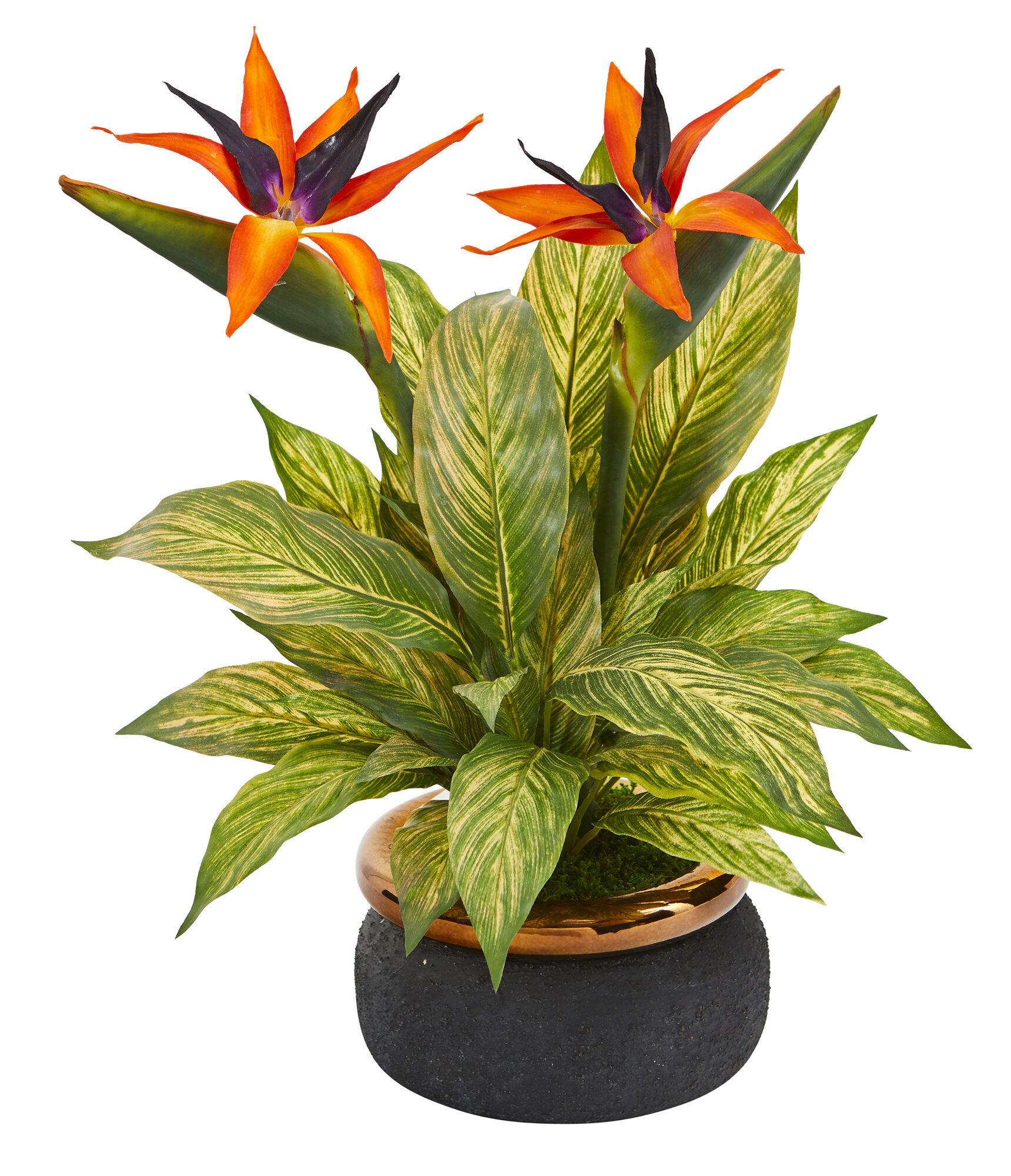 Bay Isle Home Bird Of Paradise And Musa Leaf Artificial Mixed Floral Arrangement In Planter Wayfair