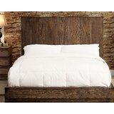 Hindsville Platform Bed by Brayden Studio®
