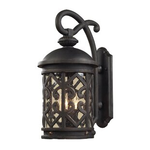 Robyn 2-Light Outdoor Wall Lantern