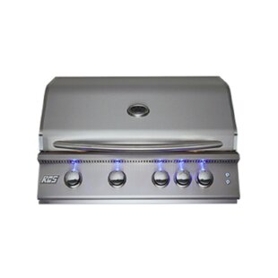 Premier 4-Burner Built-In Convertible Gas Grill By RenaissanceCookingSystems
