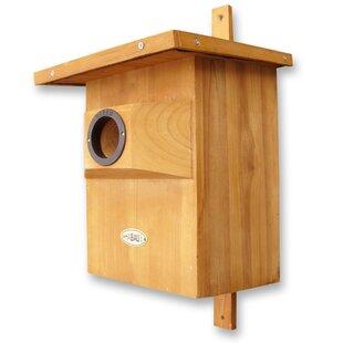 Mounted Bird House By Archie & Oscar