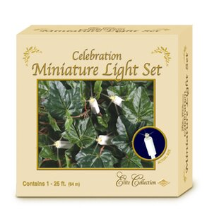 The Beistle Company Elite Celebration 100-Light String Light
