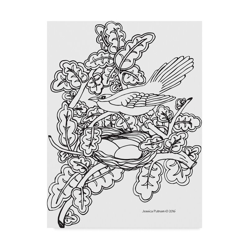 - Trademark Art 'Bird Coloring Book 2' Drawing Print On Wrapped Canvas  Wayfair