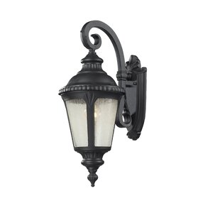 Lumley 1-Light Outdoor Wall Lantern