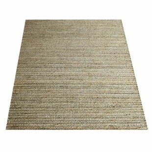 Looking for Anneke Sumak Eco-Friendly Hand-Knotted Beige/Ivory Indoor/Outdoor Area Rug Find & Reviews