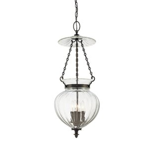 Darby Home Co Eric 4-Light Urn Pendant