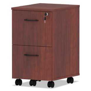 Jacobo 2-Drawer Mobile File Pedestal by Symple Stuff