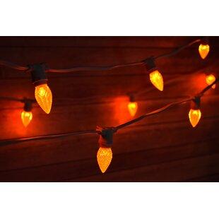 The Paper Lantern Store 25-Light 29 ft. Globe String Light
