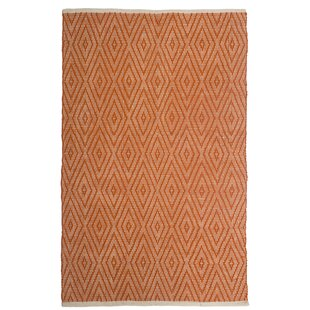 Estate Indoor/Outdoor Hand-Woven Orange Area Rug