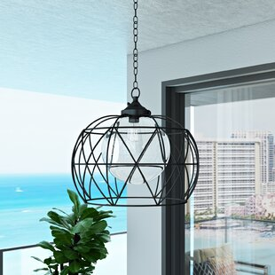 Doane 1-Light Outdoor Pendant By Orren Ellis Outdoor Lighting