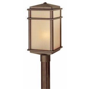 Darby Home Co Chesterhill Outdoor 1-Light Lantern Head
