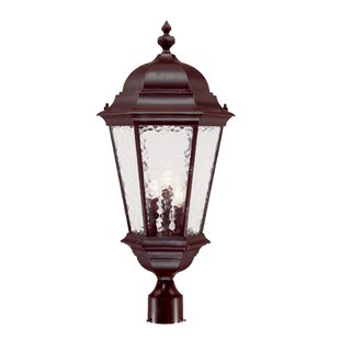 Brook Lane Outdoor 3-Light Lantern Head by Darby Home Co
