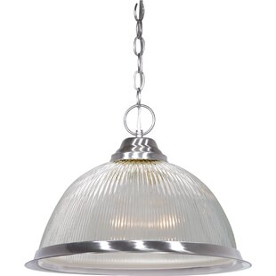 Dedham 1-Light Dome Pendan..