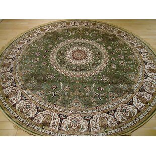 Shanelle Living Room Hand-Knotted Silk Green Area Rug by Astoria Grand