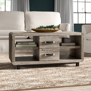 Jodi Coffee Table with Storage by Greyleigh