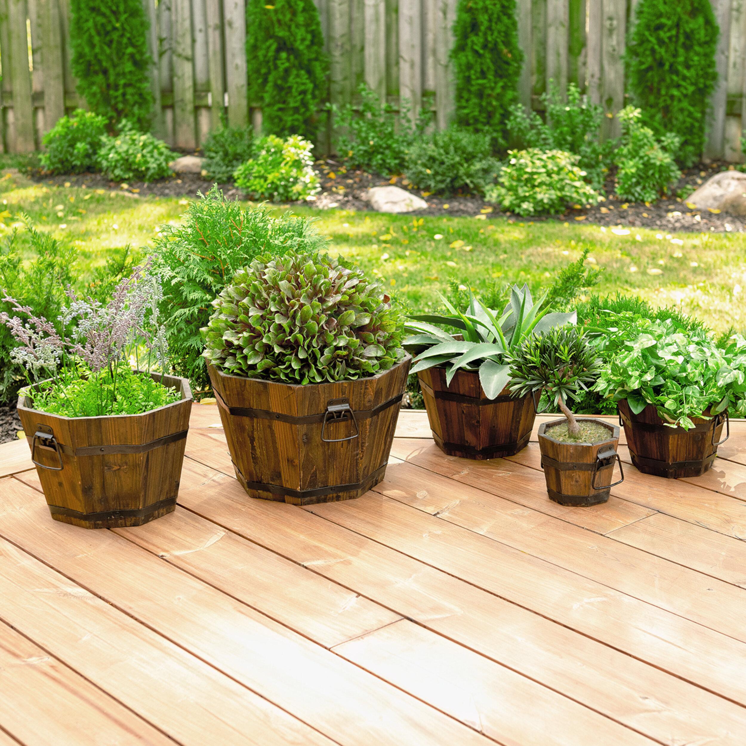 Leisure Season Barrel Style 5 Piece Cypress Planter Set Reviews Wayfair