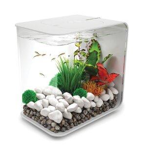 4 Gallon Flow Aquarium Tank