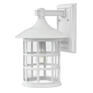 Carlsen 1-Light Outdoor Wall Sconce