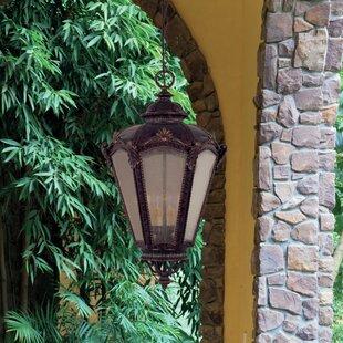 Cloquet 4 Light Outdoor Hanging Lantern Image