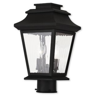 Darby Home Co Campfield 2-Light Lantern Head