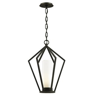 Millwood Pines Teitelbaum 1-Light Hanging Lantern