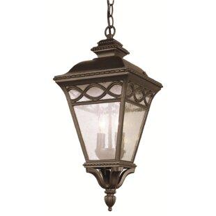 TransGlobe Lighting 3-Light Outdoor Hanging Lantern