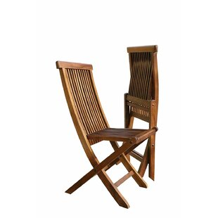 Burger Indoor/Outdoor Folding Teak Patio Dining Chair (Set of 2)