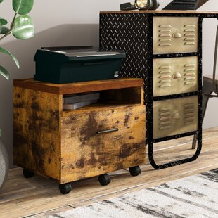 Karina Lateral 1-Drawer Vertical Filing Cabinet by Williston Forge Amazing