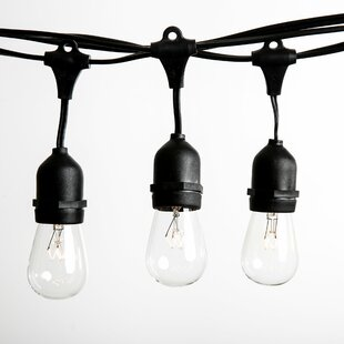 100 ft. 50-Light Standard String Light by Hometown Evolution, Inc.