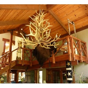 Loon Peak Doliya Antler Elk Cascade 15-Light We have associated to option Chandelier