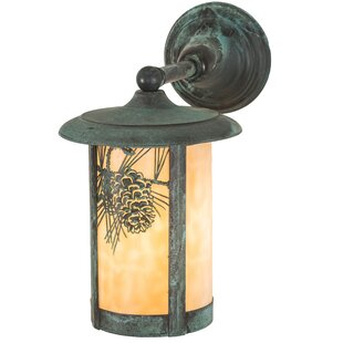 Wyona Winter Pine Outdoor Wall Lantern by..