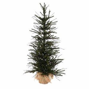 Christmas Trees   Wayfair.co.uk