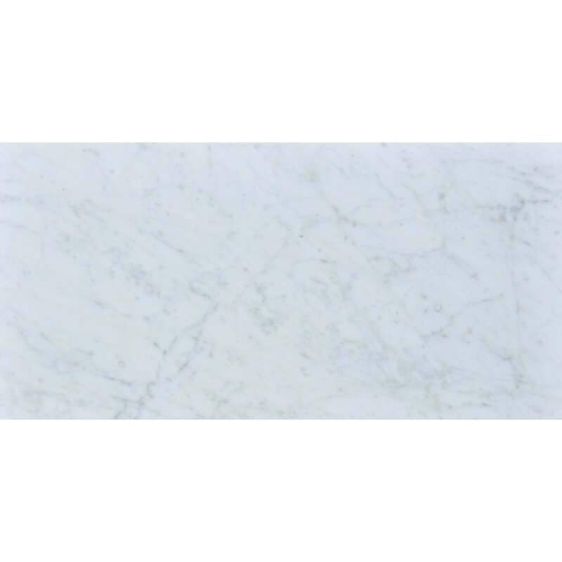 The Bella Collection Carrara 12 X 24 Honed Marble Field Tile In