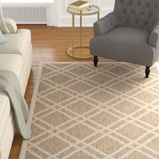 Octavius Brown Indoor/Outdoor Area Rug By Charlton Home