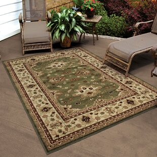Promo 65% Off on Montrose Green Indoor/Outdoor Area Rug by ...