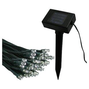 The Holiday Aisle Flipo Solar String Light