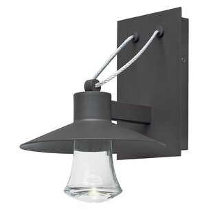 Brayden Studio Musson Outdoor Sconce