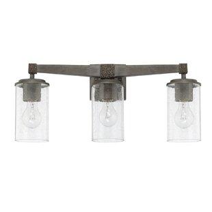 Williston Forge Hitton 3-Light Vanity Light