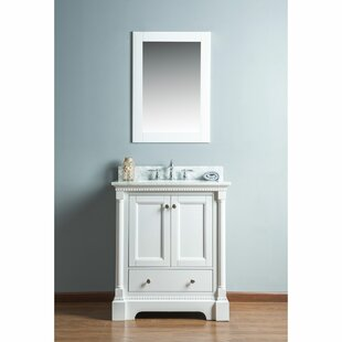 Rayleigh 30 Single Bathroom Vanity Set with Mirror by Charlton Home