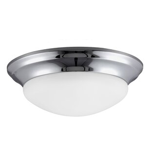 Darby Home Co Byrnedale 1-Light Flush Mount