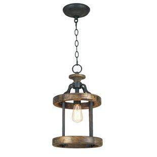 Laurel Foundry Modern Farmhouse Elisabetta 1-Light Lantern Pendant