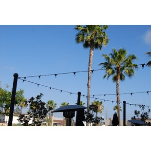 String Light Company City ..