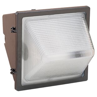 Darby Home Co Ravens 1 Head Outdoor Floodlight