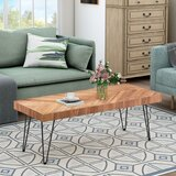 Waseca Coffee Table by Union Rustic