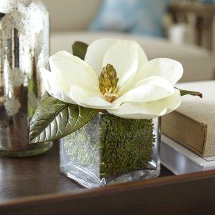 Silk magnolia arrangements wayfair faux magnolia bloom floral arrangement mightylinksfo