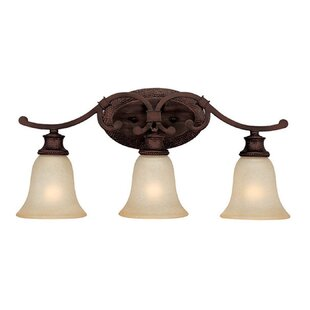 Darby Home Co Lindauer 3-Light Vanity Light