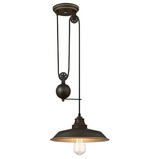 Trent Austin Design Alayna 1-Light Dome Pendant