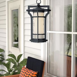 Espitia 1-Light Outdoor Hanging Lantern by Millwood Pines