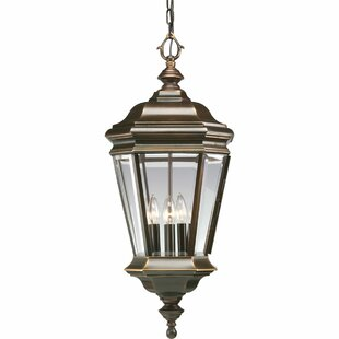 Alcott Hill Triplehorn 4-Light Outdoor Brass Hanging Lantern