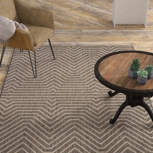 Clarion Dark Gray Indoor/Outdoor Area Rug